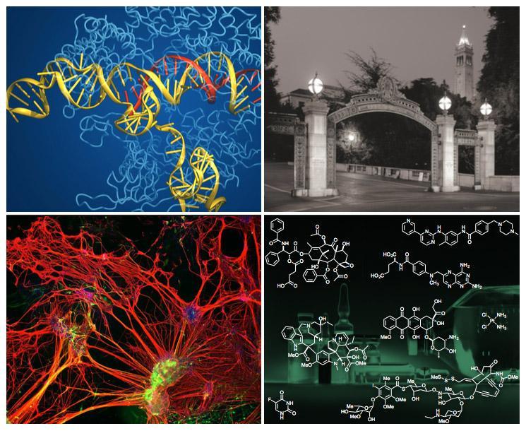 chem bio graphics