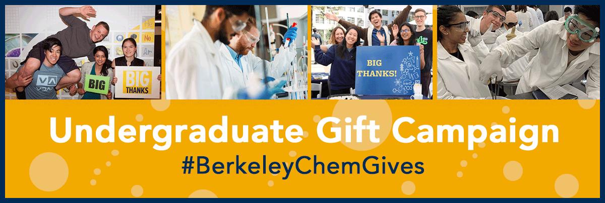 Undergraduate Gift Campaign