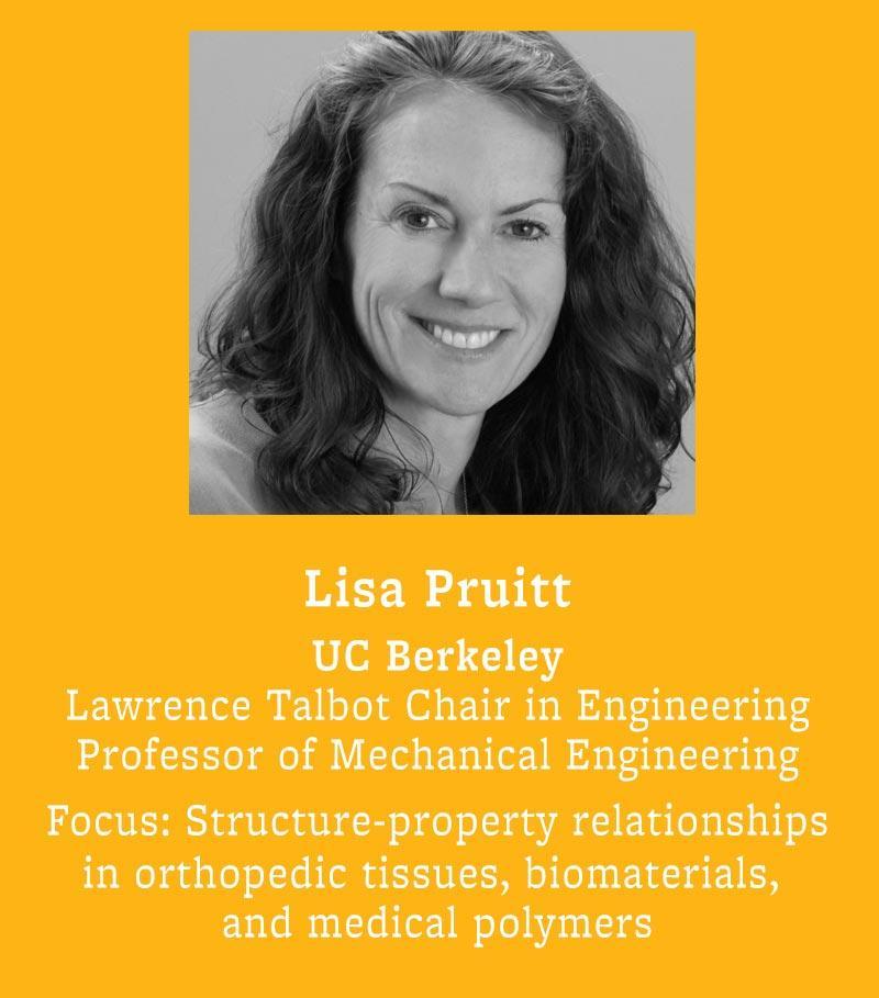 Lisa Pruitt