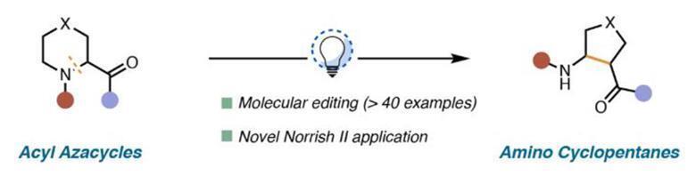Example of Norrish type II reaction