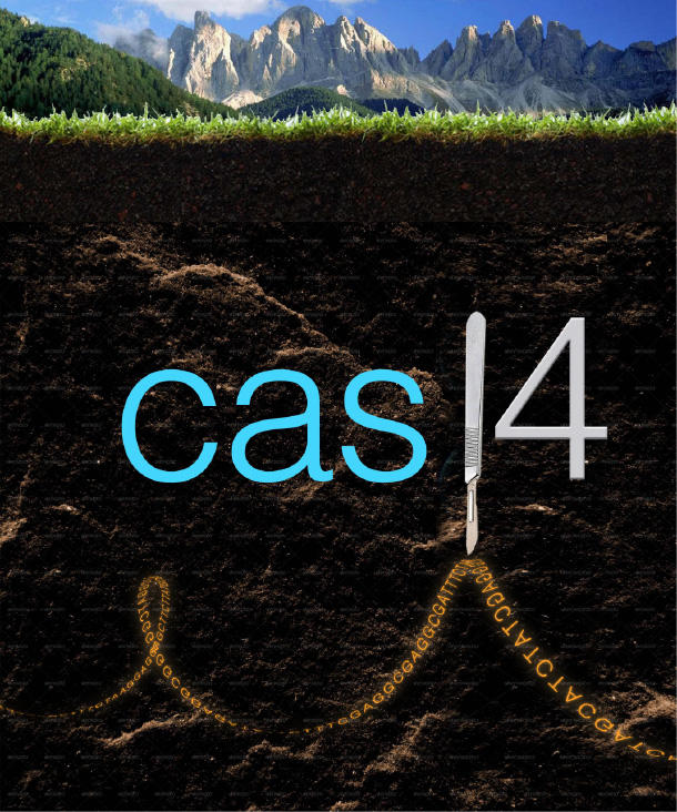Graphic of Soil and CAS14. (Iris Burstein image)