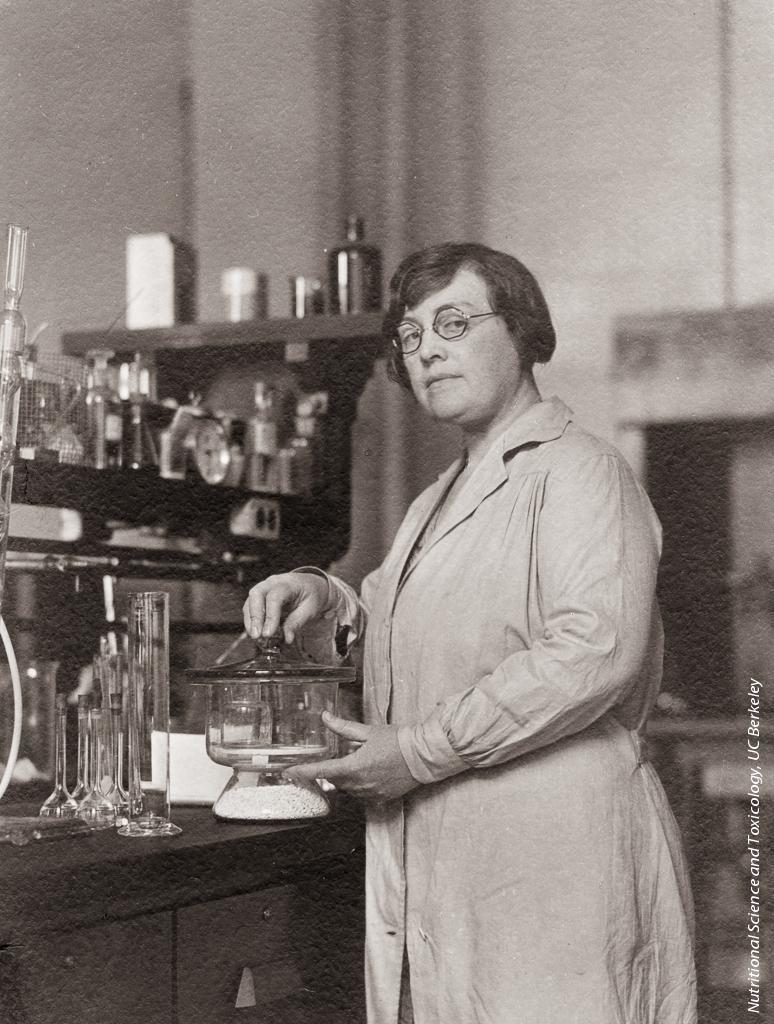 Agnes Fay Morgan