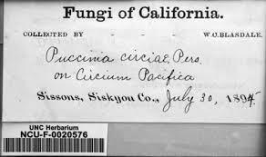 Walter Blasdale, fungi research collection Univeristy of North Carolina