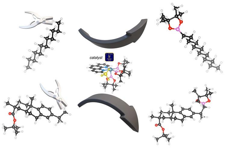 Illustration of catalyst based on iridium