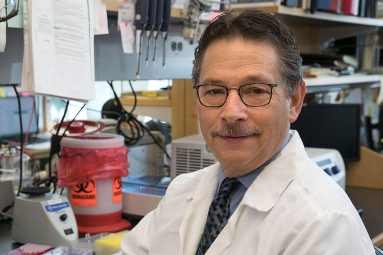 Dr. Donald Kohn, a distinguished professor of microbiology, immunology and molecular genetics, pediatrics and molecular and medical pharmacology at the David Geffen School of Medicine at UCLA