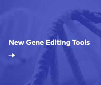 New Gene Editing Tools