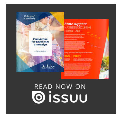 Learn about the Campaign on ISSUU