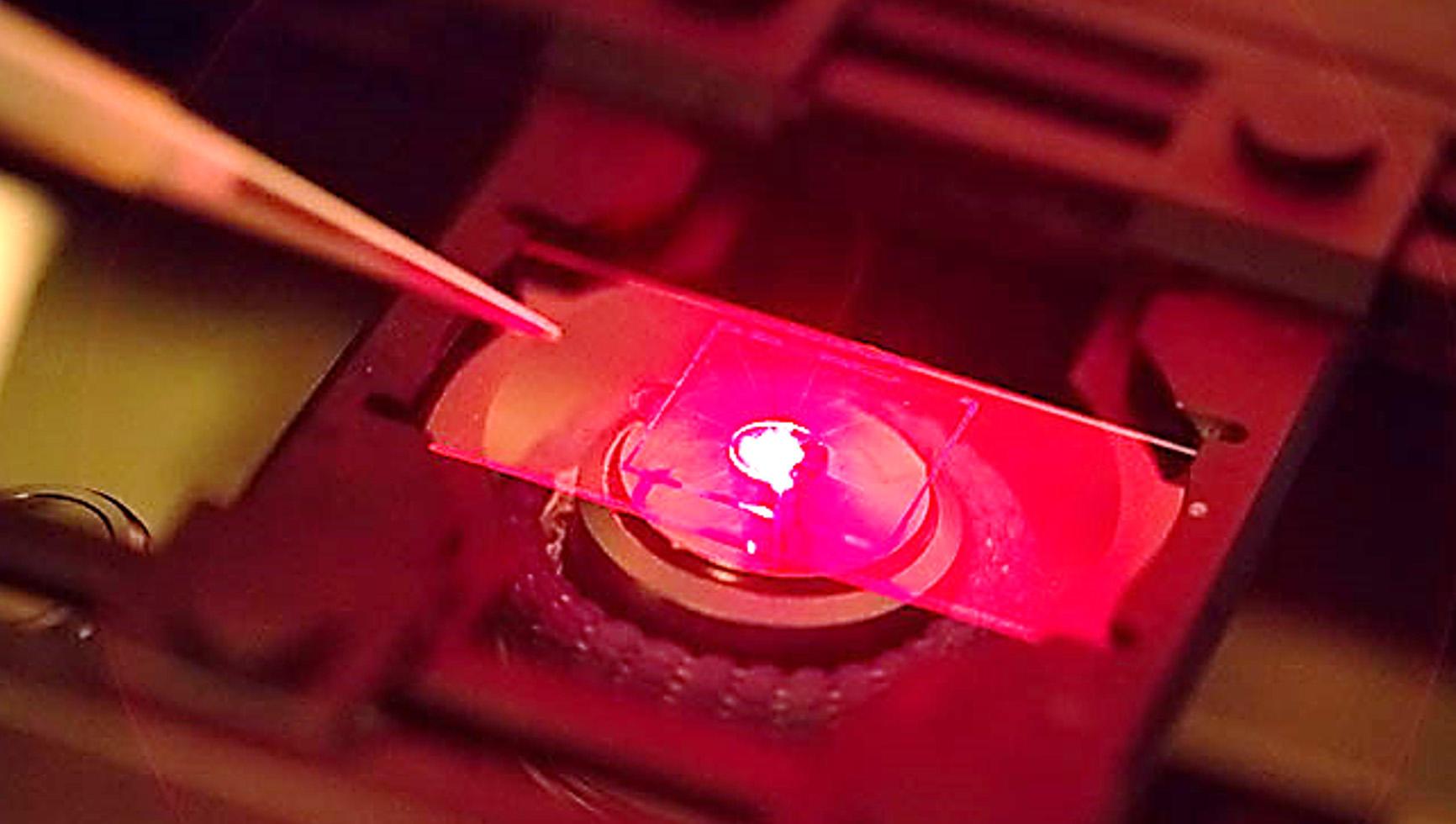 Near-infrared imaging for deep-tissue microscopy of brain chemistry