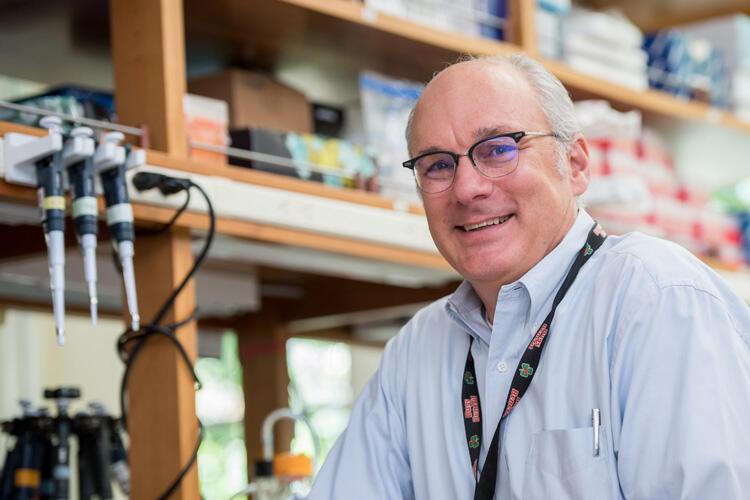 Dr. Mark Walters, a professor of pediatrics at UCSF