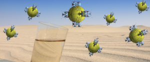 MOFS float above the desert.  Photo courtesy California Magazine.