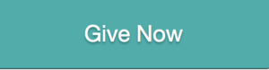 give now to the Graduate diversity initiative