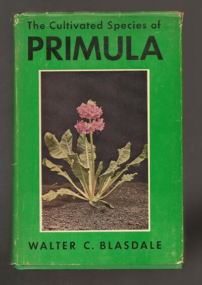 Text cover image of Cultivated Species of Primula